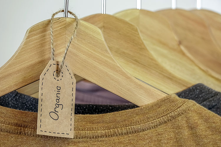 Organic clothes from sustainable fashion